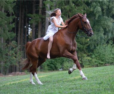 Sensicellhorse Alissa Fuchs